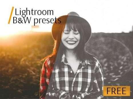 Free Lightroom Black and White Preset
