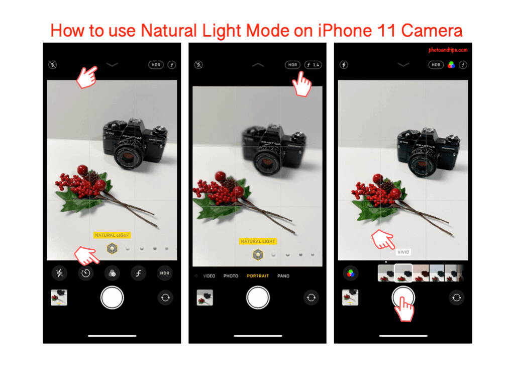How to use Natural Light Mode on iPhone 11 Camera app
