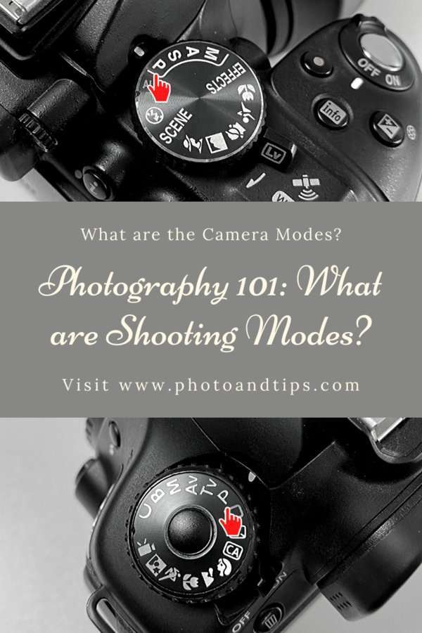 Shooting Modes in Camera Settings-Program
