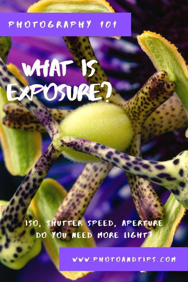 PHOTOGRAPHY 101_ WHAT IS EXPOSURE?