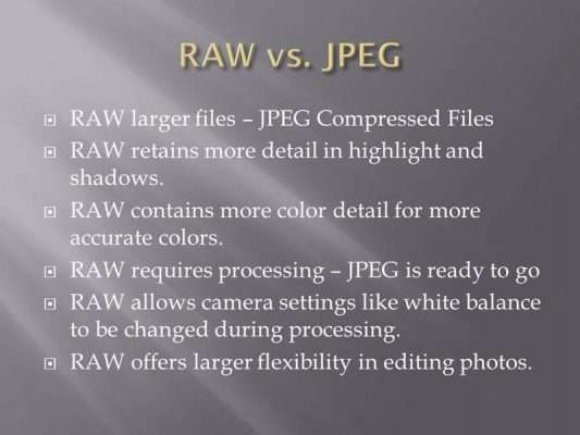 Photography 101: Shooting RAW vs. JPEG