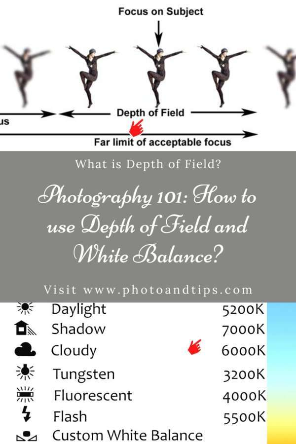Photography 101_ How to use Depth of Field and White Balance