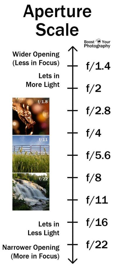 What is Aperture in Photography