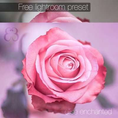 275+ excellent free presets