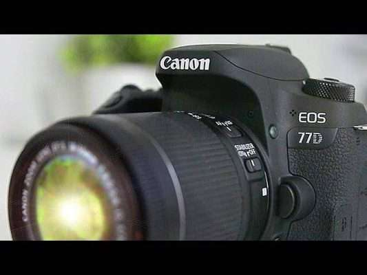 Canon 77D Camera Review